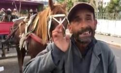 فيديو : حملة شرسة على العربات المجرورة بالدواب بتيط مليل وأصحابها يطالبون بالبديل